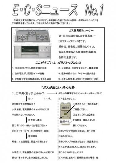 ECSニュース1号